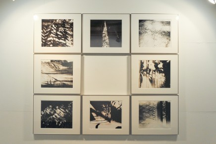 """""""Sun Picking up"""" exhibition view"""